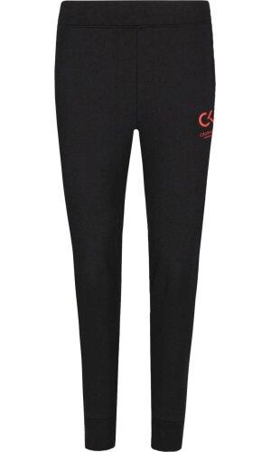 Calvin Klein Performance Spodnie dresowe | Regular Fit