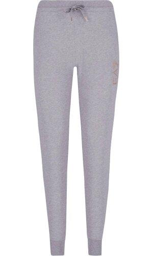 EA7 Spodnie dresowe | Regular Fit