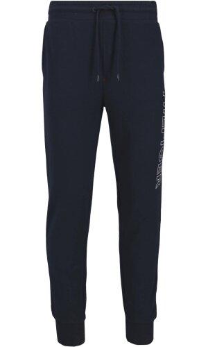Tommy Hilfiger Sweatpants | Regular Fit