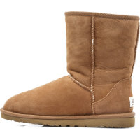 Classic Boots UGG brown