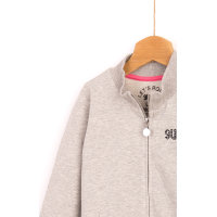 Sweatshirt Guess gray