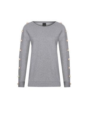 Pinko Sweatshirt Fronia