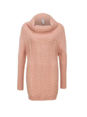 Pinko Escludendo roll-neck sweater