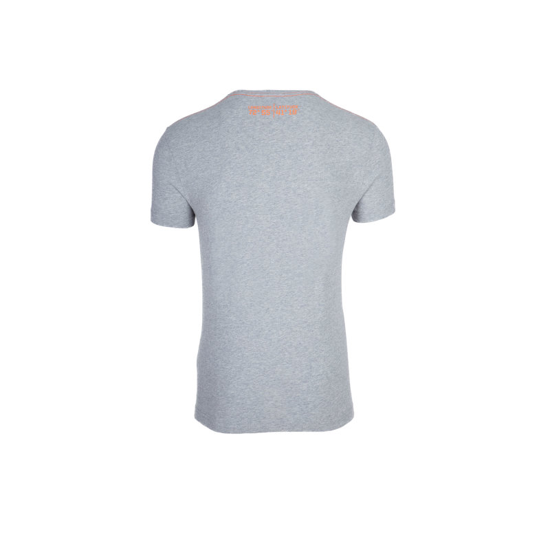 YC. US-49 T-shirt Gant gray