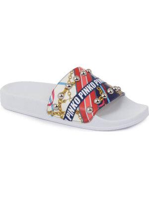 Pinko slides avida