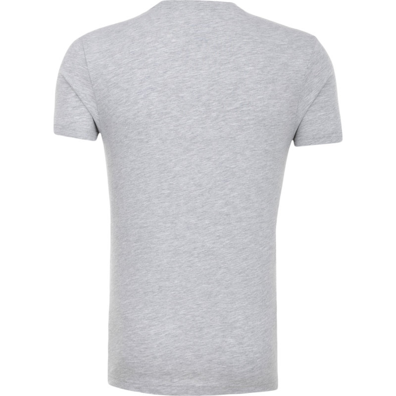 Dimension T-shirt Colmar gray