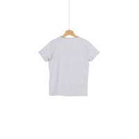 Alvin t-shirt Pepe Jeans London ash gray
